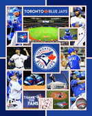 Toronto Blue Jays  20x24 Stretched Canvas