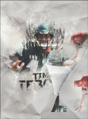 Eagle Soars Tim Tebow Poster