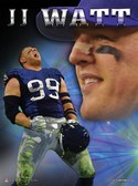 Celebration JJ Watt Poster