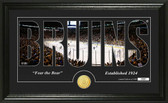 "Boston Bruins ""Silhouette"" Bronze Coin Panoramic Photo Mint"