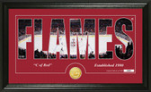 "Calgary Flames ""Silhouette"" Bronze Coin Panoramic Photo Mint"