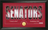 "Ottawa Senators ""Silhouette"" Bronze Coin Panoramic Photo Mint"