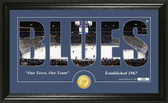 """St. Louis Blues """"Silhouette"""" Bronze Coin Panoramic Photo Mint"""