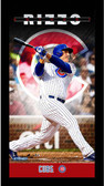 Anthony Rizzo Chicago Cubs Player Profile Wall Art 9.5x19 Framed Photo