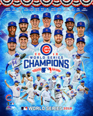 Chicago Cubs 2016 World Series Champions 8x10  Composite Photo