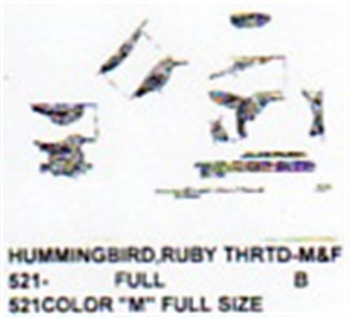 Ruby throated hummingbird male female perching flying