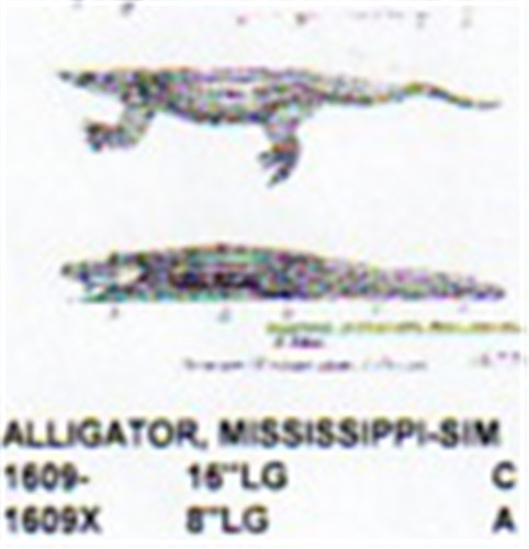 Alligator carving plan