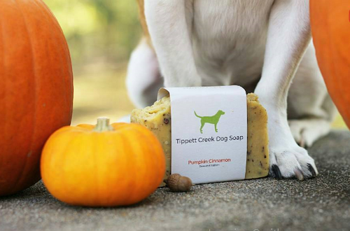 Our Pumpkin Cinnamon dog soap bars are back! These bars are filled with cocoa butter and pumpkin puree which help to soothe your pups skin and revitalize the shine in their coat. The addition of cinnamon not only adds a wonderful scent but also provides antifungal properties. Disclaimer: You may experience the need to nonstop cuddle with your pup after they have been bathed with this soap.