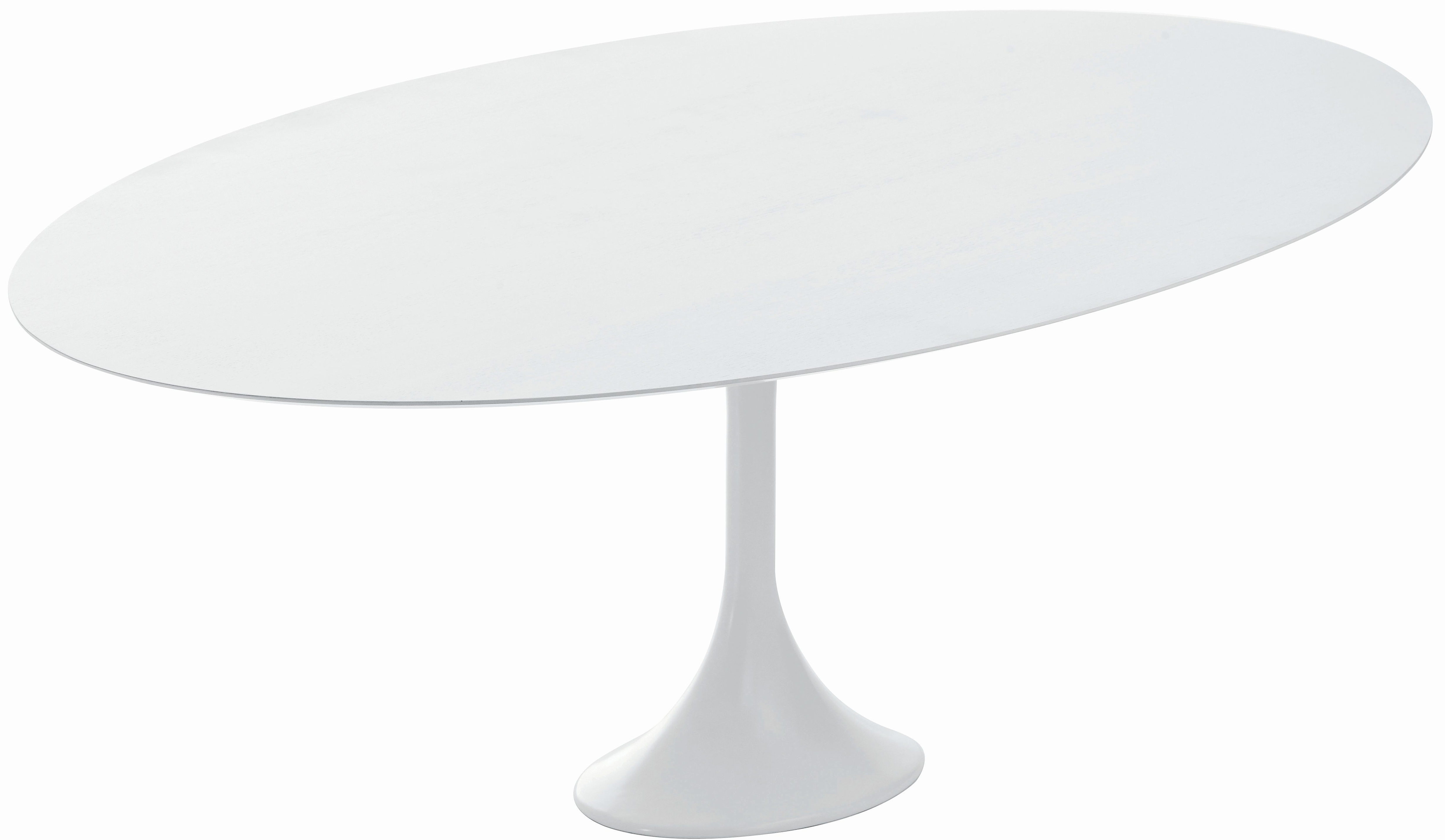 echo dining table by nuevo living