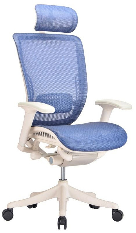 ergonomic adjustable office chair in blue mesh - ergo office chairs