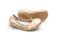 Tip Toey Joey Junior Shoes - LOVE JUNIOR