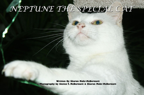 Neptune the Special Cat: Written by Sharon Mohr-McDermott with Photography by Steven T. McDermott and Sharon Mohr-McDermott