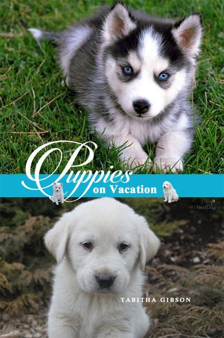 Puppies on Vacation