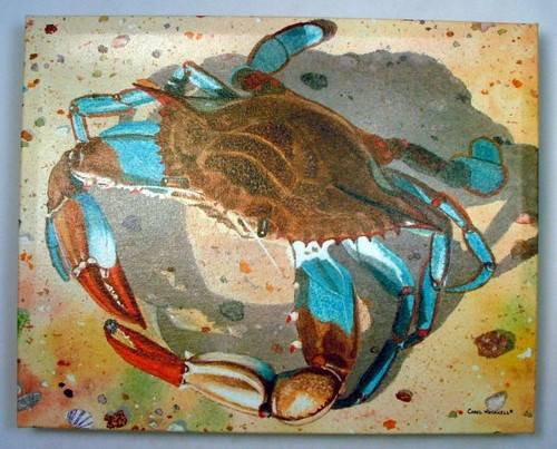 Sealife Blue Crab Giclee Canvas Gallery Wrap 15X12 Inches