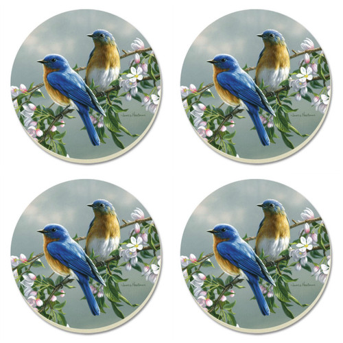 Beautiful Songbirds Bluebirds 4 Inch Round Absorbent Stone Coasters Set of 4