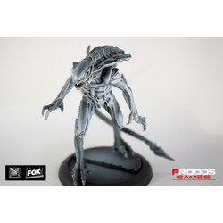 AvP - Alien Royal Guard