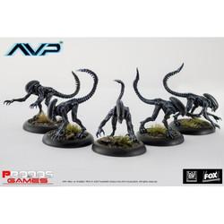 AvP - Alien Stalkers