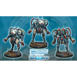 Infinity Lizard Unit Box (Multi HMG) (TAG) - Nomads