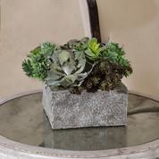 Succulent Arrangement, Faux Cactus Succulent, Cactus Arrangement, Silk Cactus
