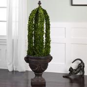 Boxwood Topiary Cone Obelisk, Boxwood Topiary Obelisk, Preserved Boxwood Topiary