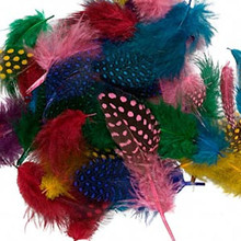 "0.1 Ounce Guinea 2-4"" Long Feather Mix - Approximately 95  Feathers"