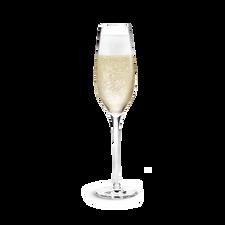 Holmegaard Cabernet Champagne Flute