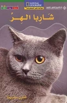 National Geographic: Level 15: A Cat's Whiskers (Arabic-English)