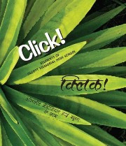 Click! (Hindi-English)