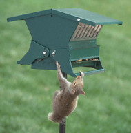 Heritage Farms Absolute II Squirrel Proof Bird Feeder
