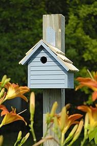 Heartwood Cape Cod Wren Bird House Blue Pickle