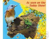 Audubon Bluebird House Guardian Branch