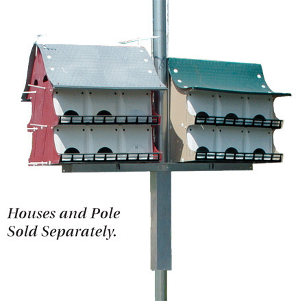 Purple martin house pole