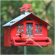 Perky Pet Squirrel Be Gone II Country Style Squirrel Proof Bird Feer  338