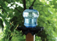 First Nature Bird Bath & Waterer FN3004