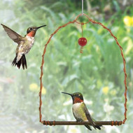 Songbird Essentials Copper Hummingbird Swing SEHHHUMS