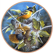 Glassmasters Baltimore Orioles