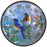 Accurite James Hautman 12 1/2 inch In/Outdoor Bluebird Thermometer