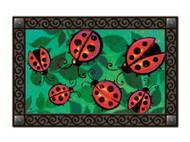Magnet Works Ladybug Party MatMate