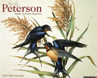 Willow Creek Press Peterson Field Guide to Birds