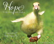 Willow Creek Press Hope Is The Thing With Feather 2013 Calendar
