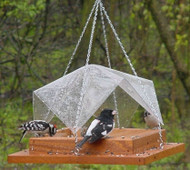 Songbird Essentials 9 x 9 Super Tray w/Cover Feeder