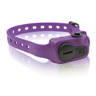 Dogtra iQ Bark Collar Purple