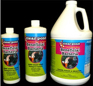 The new revolutionary Clear Pond BSL Liquid formula carries beneficial bacteria that help in keeping the fish pond neat, clean and healthy. One ounce of Clear Pond BSL can treat up to 1000 gallons of water effectively. It constitutes of microorganisms (Nitrobacter and Nitrosomos mainly) that are known to be advantageous to ecological balance of the pool or fish pond. It clears out foul smell, kills contaminated compounds and improves the overall level of oxygen in the water. Using Clear Pond BSL Liquid at regular intervals ensure that the kingdom of algae is killed before it even starts to begin. Algae is nothing but group of polyphyletic and paraphyletic microbes that spread a think green layer on the surface of water making it look dirty, unfit and hazardous for environment. Specially designed Clear Pond BSL Liquid formula can save your pond from this unattractive degradation. Clear Pond exhibits maximum affect when used in water which has the temperature of below 50-¬F and above 90-¬F.