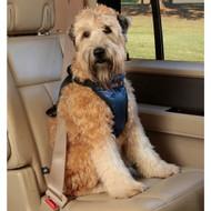 Solvit Deluxe Car Safety Harness, Medium 62405