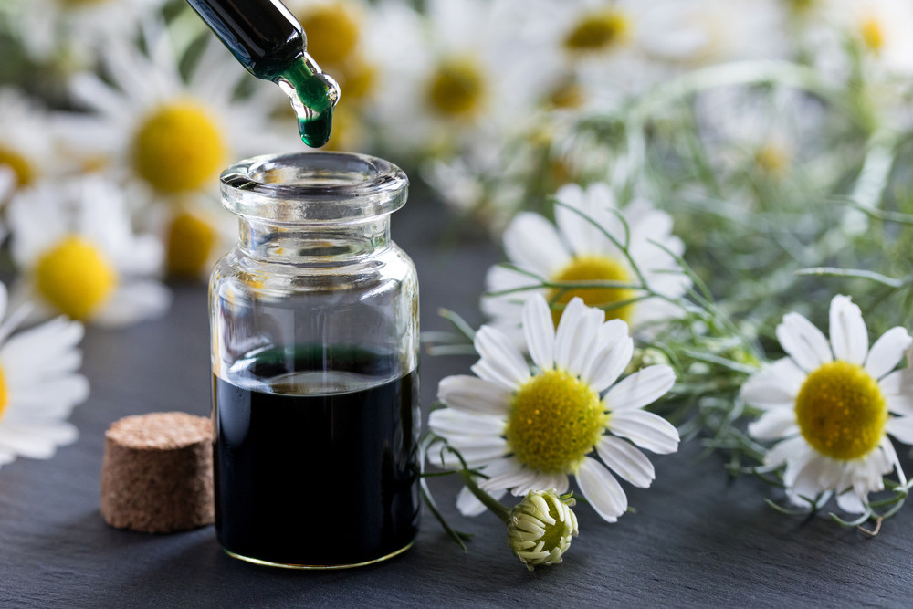 Top Four Benefits of Roman Chamomile Essential Oil