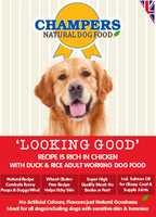 Champers Rich in Chicken Dry Dog Food - 12kg + 3kg FREE