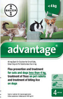 Advantage 40 Spot On Flea Drops for Small Dogs, Cats and Rabbits (<4kg) - 4Pack