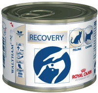 Royal Canin Canine/Feline Recovery Wet Cat/Dog Food - 12 x 195G