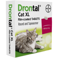 Drontal XL Worming Tablets for Large Cats and Kittens (4kg+) - 1 Tablet