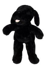 Mocha the Black Labrador